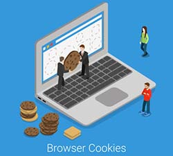 browsing data, cookies, safety, privacy